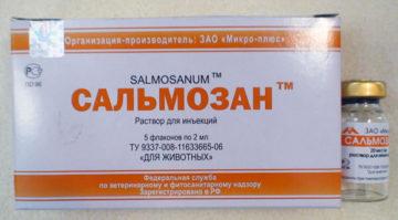 Сальмозан